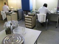 in vitro metoda
